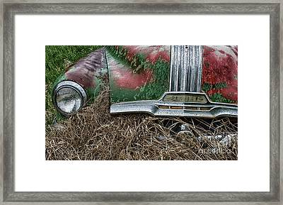 Down In The Dumps 19 Framed Print