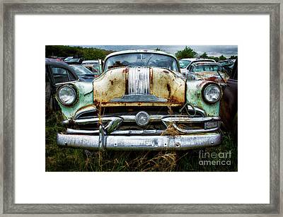 Down In The Dumps 2 Framed Print by Bob Christopher
