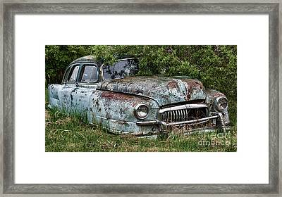 Down In The Dumps 20 Framed Print