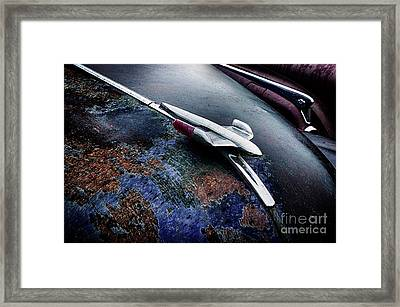 Down In The Dumps 23 Framed Print