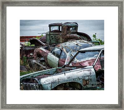 Down In The Dumps 3 Framed Print by Bob Christopher