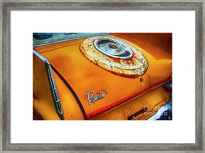 Down In The Dumps 6 Framed Print by Bob Christopher
