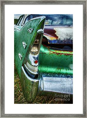 Down In The Dumps 7 Framed Print by Bob Christopher