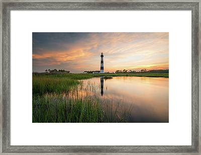 Framed Print featuring the photograph Down In The Swamp by Bernard Chen