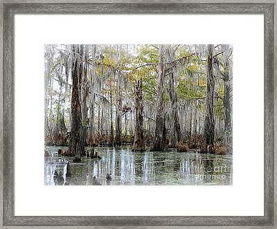 Down On The Bayou - Digital Painting Framed Print by Carol Groenen