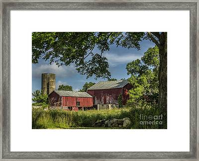 Down On The Farm Framed Print by JRP Photography