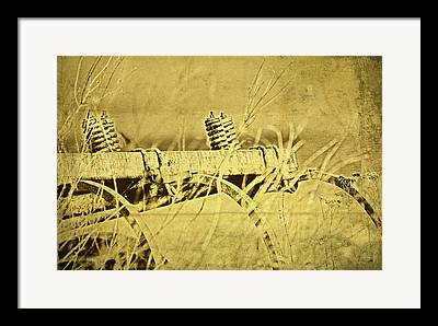 Raking Framed Prints
