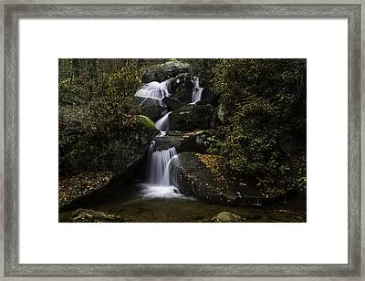 Down Stream Framed Print