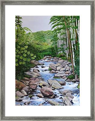 Down Stream  Framed Print by Marilyn McNish