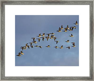 Down The Corridor Framed Print by Tony Beck