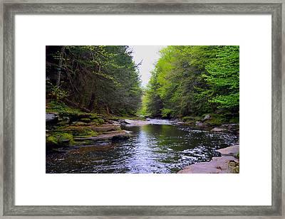 Down The Creek  Framed Print