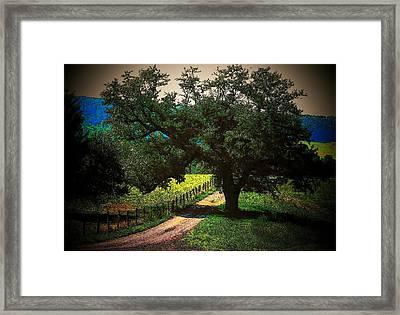 Down The Lane Framed Print by Joyce Kimble Smith