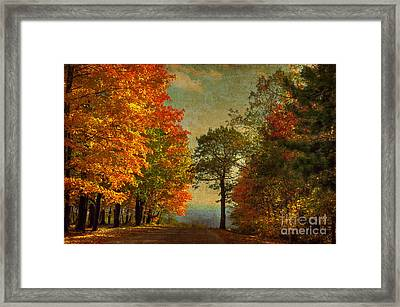 Down The Mountain Framed Print by Lois Bryan