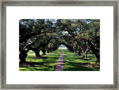 Down The Path Framed Print by Maggy Marsh