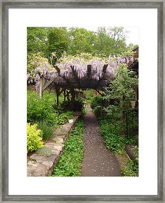 Down The Path Framed Print