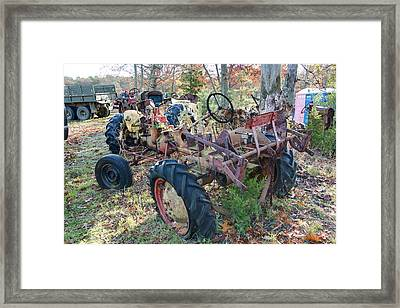Down To The Frame Framed Print by Timothy Hedges