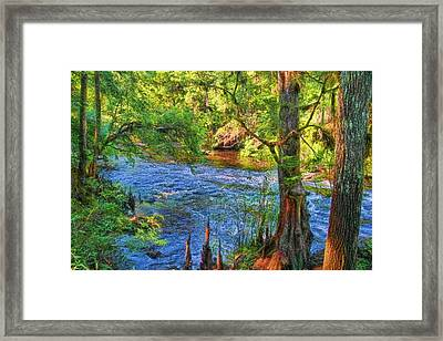 Down To The River Framed Print by HH Photography of Florida
