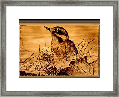 Downey In Waiting Framed Print by Jay Johnston