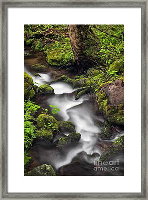 Downstream From The Waterfalls Framed Print by Madonna Martin