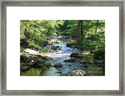 Downstream Framed Print by John Telfer