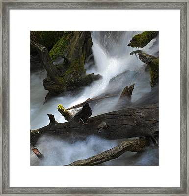 Downstream Framed Print by Matthew Fredricey