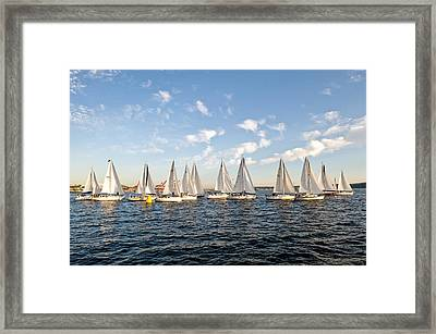 Downtown Sailing Series Framed Print by Tom Dowd