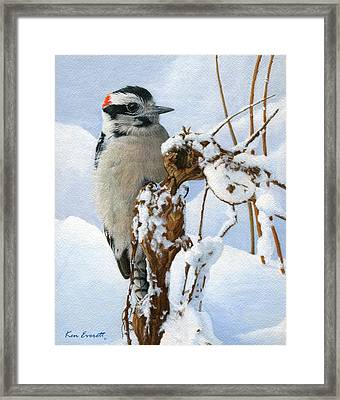 Downy Woodpecker  Framed Print by Ken Everett