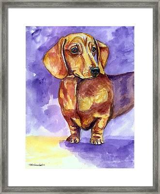 Doxie - Dachshund Dog Framed Print by Lyn Cook