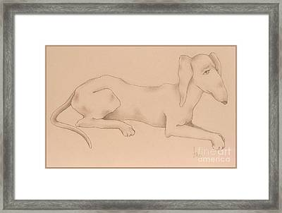 Doxies, Bad To The Bone Framed Print
