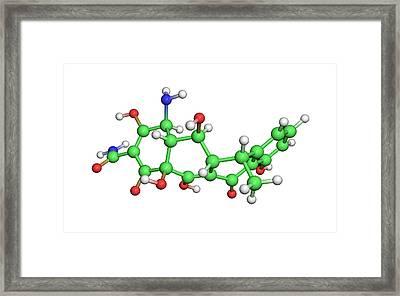 Doxycycline Antibiotic Molecule Framed Print by Dr Tim Evans