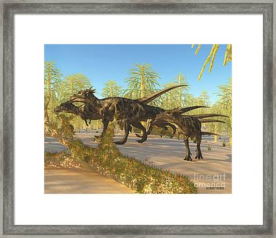 Dracorex Framed Print by Corey Ford