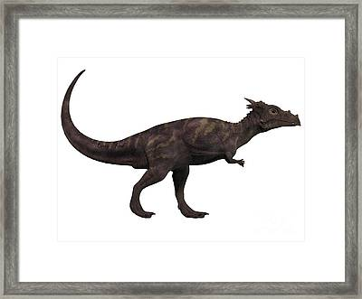 Dracorex On White Framed Print by Corey Ford