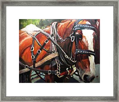 Draft Horse Framed Print by Brian Simons