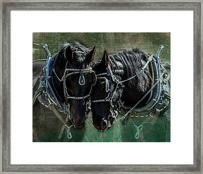 Framed Print featuring the photograph Draft Horses by Mary Hone