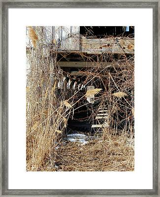 Drafty Barn Framed Print by Scott Kingery