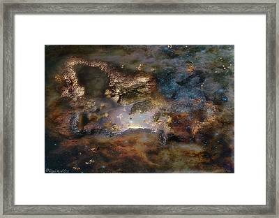 Dragon Watches.... Framed Print