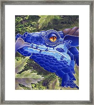Dragon Eyes Framed Print by Melissa A Benson
