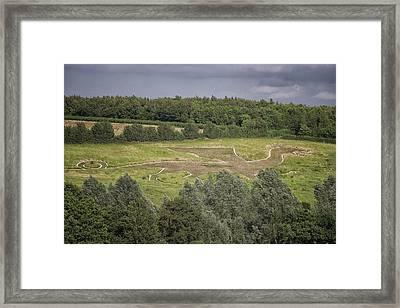 Dragon Field Framed Print