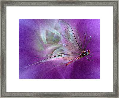 Dragon Fly Framed Print by Suzanne Williams