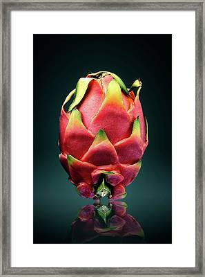 Dragon Fruit Or Pitaya  Framed Print