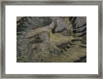 Dragon Fury Framed Print