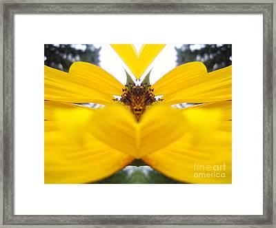 Dragon Sunflower Framed Print by Sonya Chalmers