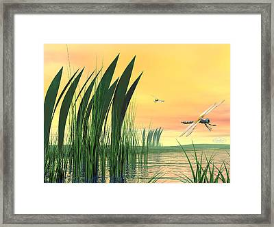 Dragonflies Upon Pond Framed Print