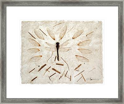 Dragonfly And Wings Framed Print by Annie Alexander