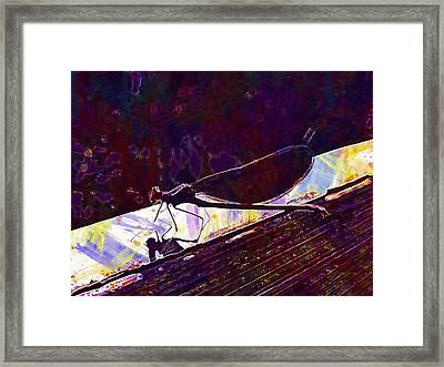 Dragonfly Demoiselle Insect Nature  Framed Print
