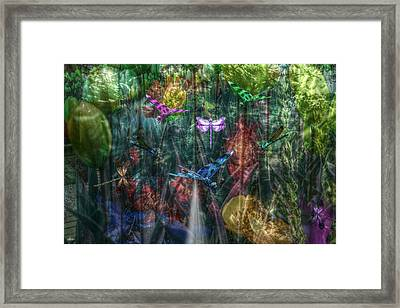 Dragonfly Dream Framed Print by Bill Oliver