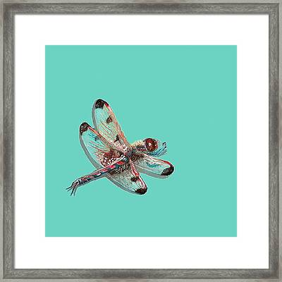 Framed Print featuring the painting Dragonfly by Jude Labuszewski