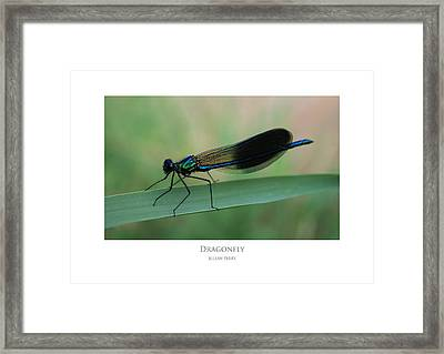 Framed Print featuring the digital art Dragonfly by Julian Perry