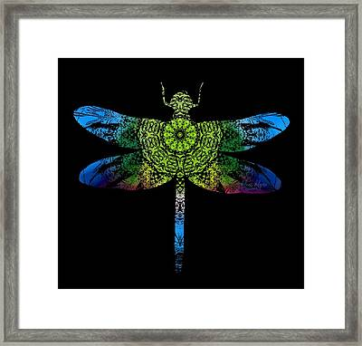 Dragonfly Kaleidoscope Framed Print