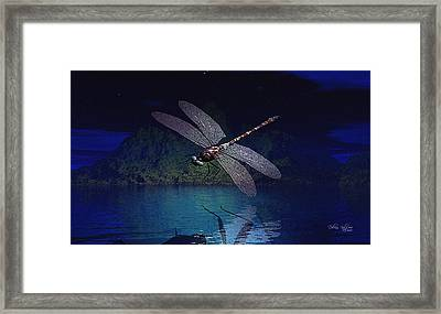 Dragonfly Night Reflections Framed Print